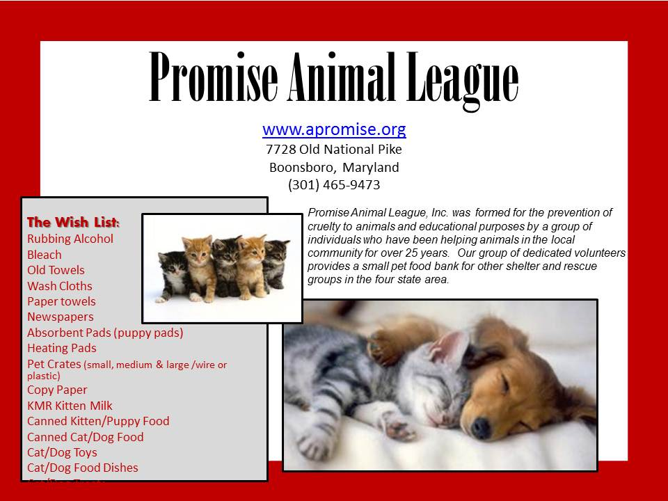 Promise Animal League